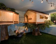 kids by IBD Studio http://www.houzz.com/photos/1925181/Kid-s-Treehouse-Bedroom-traditional-kids-phoenix