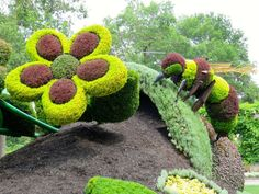 #chameleon #Montreal #botanical #garden #sculpture | Chameleon Plant,  Plants And Topiary