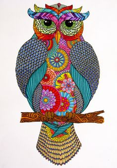 Owl_Complete.jpg