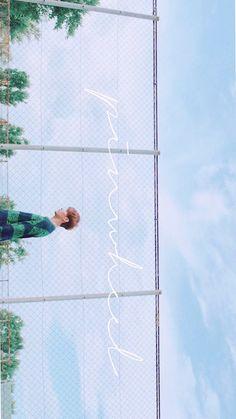 Seventeen || Dk