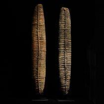 Dave DeRoche :: Salt Loaves, Papua New Guinea