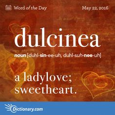 Dulcinea - a ladylove.  Barney calls his lady dulcinea and thereby confusing the group. Since the word was not uttered by Quixote, the situation becomes a donnybrook, driving 3 people to plead not guilty by reason of insanity.