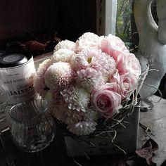 【calla.san】さんのInstagramをピンしています。 《ピンクのマムとバラのブーケ。 ピンクと白とガラスの透明感が最高。 #ピンク#マム#オペラ#バラ#スィートアバランチェ#大輪 #白#ガラス#グラス#フラワーブース#バンダの根##桜#ドライ #透明感#最高#たつの#町屋#花屋#CaIIa》
