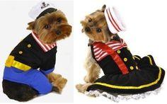 Unique Dog Halloween Costumes  http://www.squidoo.com/unique-dog-halloween-costumes