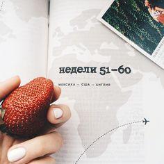 #доброеутро В такую погоду как никогда хочется улететь в тёплые страны  Но мы не птицы чтобы  взять и улететь без билетов ;да и не осень сейчас( хотя погода намекает на другое)  Поэтому утренний согревающий кофе сладкая ( на моё удивление )клубника и книга о путешествиях делают утро солнечным и ярким  #goodmorning  #travel#strawberry #маникюр#boft#instagram #дождливо #goodmorning #gm #москва #moscow#likeforlike #like4like #likeforlike #lifestyle #like4follow #likes #likes4likes #strawberry…