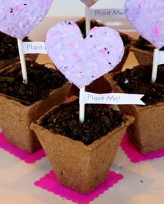brilliant fun idea!  Make your own paper and add flower seeds while it's wet.  when the paper is dry, you can plant the seeds in the dirt and it will grow flowers!!  FUN GIFT!