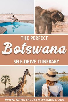 Botswana is one of the top safari destinations in Africa. But did you know the best way to explore the country is with a road trip? Here's a one-week Botswana itinerary that will take you to highlights like the Okavango Delta, the Kalahari, Chobe Natio Okavango Delta, Camping, Backpacking, Africa Destinations, Travel Destinations, Travel Diys, Travel Bag, Air Travel, Travel Packing