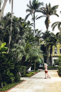 #travelblogger #travel #bloggers #leisure #luxury #fashion #style #styleblogger #vacation #drones #dronestagram #eat #lunch #dinner #breakfast #coffee #sunset #sunrise #views #poolside #thebraziliancourt #hotels #palmbeach #usa #american Wmbw, Eat Lunch, Top Travel Destinations, Drones, Palm Beach, Sunrise, Road Trip, Luxury Fashion, Hotels