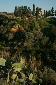 Giardino della Kolymbetra, Valle dei Templi, Agrigento, Sicilia Sicily Italy, Archaeological Site, Best Places To Eat, Terra, Italy Travel, Temples, Tourism, City, World