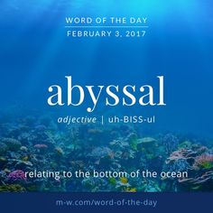 abyssal. #merriamwebster #dictionary #language