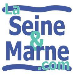 Ancien logo la-seine-et-marne.com - 2004