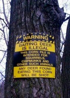 Baiting deer is illegal! https://i.imgur.com/AIghZPB.jpg