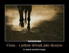 Najpiękniejszy odgłos na świecie Horse Riding, Animals And Pets, Equestrian, Pony, Passion, Horses, Humor, Cute, Tables