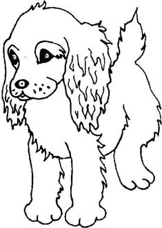 boykin spaniel puppy coloring page freepuppies coloring pagesprintable picturescolouring