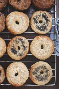 Recipe: New York City Bagels