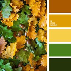 Color Palette 3561 autumncolorpalette brown color of green leaves dark green green color greenery Pantone color 2017 saturated orange shades of green shades of orange summer colors warm shades of orange warm yellow Green Colour Palette, Green Colors, Colour Schemes, Color Combos, Pantone 2017 Colour, Color Balance, Shades Of Green, Orange Shades, Summer Colors