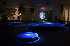55th Venice Biennale. Terike Haapoja at the Nordic Pavilion