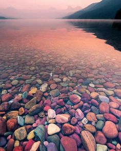 Thanks for letting us share Peaceful foggy morning Glacier National Park Montana. Photo by. Natur Wallpaper, Glacier National Park Montana, Glacier Np, Glacier Montana, West Glacier, Stone Wallpaper, Beautiful Nature Wallpaper, Colorful Wallpaper, Phone Backgrounds