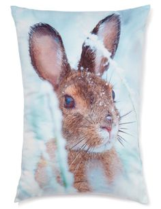 Buy the Hare Cushion from Marks and Spencer's range. One That Got Away, Printed Cushions, Interior Accessories, Hare, Digital Prints, Living Spaces, Christmas Decorations, Fancy, Gifts