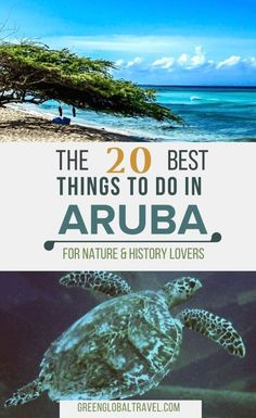 Check out our guide to the 20 Best Things to Do in Aruba for Nature & History Lovers, including the Donkey Sanctuary, Antilla Shipwreck, Arikok National Park, Hooiberg & much more! via by june Places To Travel, Travel Destinations, Travel Tips, Travel Advice, Travel Quotes, Travel Stuff, Travel Deals, Travel Hacks, Travel Packing