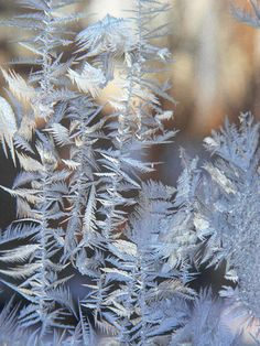 An abundance of #frost, sculpted by the wind, sparkling in day and evening light, lured me to zoom in and capture the dazzling effects. It was also about finding virtue in a... #trending #etsy #etsymntt #sunlight #cards #stationery #nature #winter