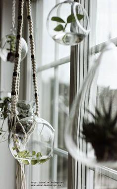 Glaskupor och ampel av makramé och träkulor