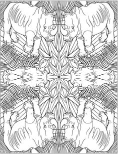 Welcome to Dover Publications; Animal Kaleidoscope Designs Coloring Book