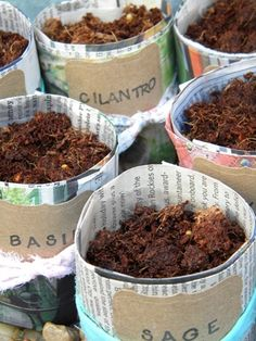 homework: today's assignment - be inspired {creative inspiration for home and life}: The Dirt: newspaper seedling pots