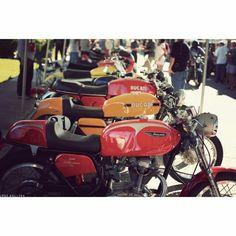 #caferacer #yamaha #sportster #bmw #triumph #kawasaki #honda #harleydavidson #motorcycle #motorcycles #bike #vintage #Padgram