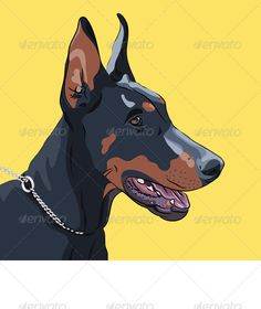 Close-up Serious Dog Doberman Pinscher Breed #GraphicRiver Close-up portrait of serious dog Doberman Pinscher breed. EPS 8 plus high-quality Jpeg. No transparency, no gradient, no blends, no meshes. More dogs of different breeds for you: Created: 18April13 GraphicsFilesIncluded: JPGImage #VectorEPS Layered: Yes MinimumAdobeCSVersion: CS Tags: DobermanPinscher #Pinscher #alert #animal #attentive #black #breed #clever #closeup #companion #dobermann #dog #domestic #drawing #guard #intelligent…