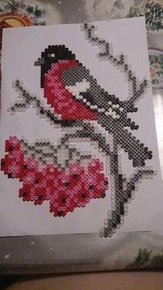 Bird hama perler beads by Susanne Damgård Sørensen - Pattern: http://www.pinterest.com/pin/374291419001689731/: