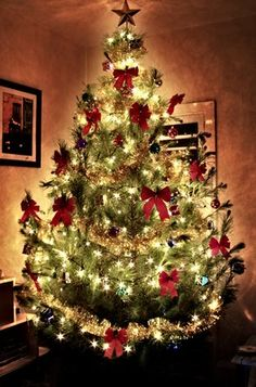 Full Decorated Christmas Trees - Bing Images