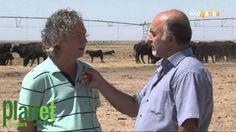 Planet Livestock Ekopazar Atv Avrupa Programı