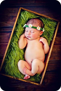 Newborn Baby Girl Daisy Photo Prop Headband.