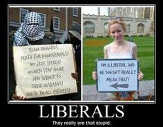 Radical Islam and Liberals: The New Axis of Evil Liberal Hypocrisy, Liberal Logic, Stupid Liberals, Political Ideology, Political Quotes, Political Cartoons, Thing 1, Out Of Touch, Sick