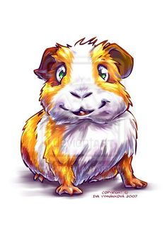 Guinea-Pig 1 by ~Fany001 on deviantART