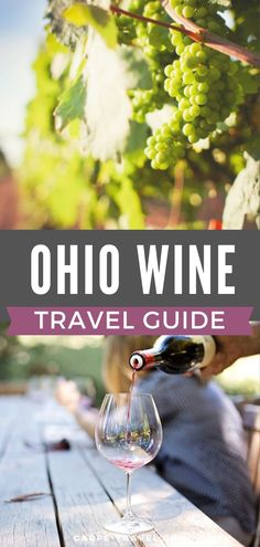 Today the Ohio wine industry is budding and is producing award-winning wines. It's home to 265 wineries with more on the way. Use our guide to plan where to sip, where to stay, festivals to enjoy, and events to attend. Best Vacations, Vacation Trips, Columbus Travel, Travel Humor, Travel Guide, Travel Ideas, Best Places To Travel, Travel Alone