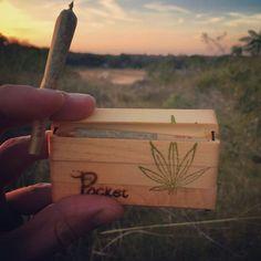 Medical Marijuana Quality Matters | Repined By 5280mosli.com | Organic Cannabis College | Top Shelf Marijuana | High Quality Shatter | #OrganicCannabis