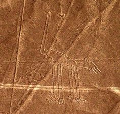 Nazca Dog by Dana Dopleach. The Nazca Lines are massive geoglyphs built in the Peruvian desert between 200 BCE to 600 CE. They are still visible today.