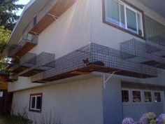 Catwalk Cage Keeps Cats Comfortable & Close To Home...see more at PetsLady.com -The FUN site for Animal Lovers