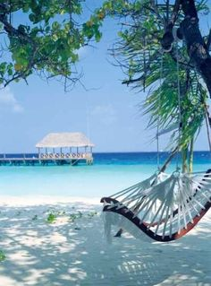 Cocoa Island, Maldives. I just want the hammock chair at any tropical location.