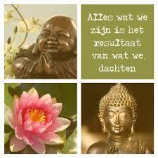 226 Beste Afbeeldingen Van Boeddha Spreuken Boeddha