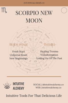 scorpio march 2020 tarot horoscope oracle daphne