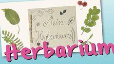 Eine Sammlung getrockneter Pflanzenteile (auch Herbarium oder Herbar genannt) basteln Sie mit Ihrem Kind mit dieser tollen Anleitung ganz einfach selber.