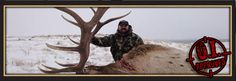 Elk hunting.... everybody's doing it. http://gothunts.com/category/hunt-elk/