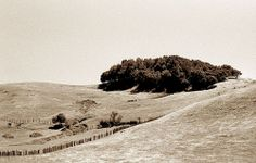 Contra Costa County by TWE42, via Flickr