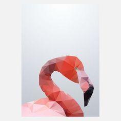 Druck Geo Flamingo