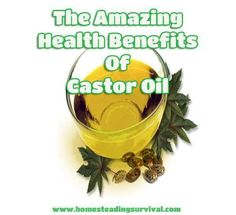 9-30-14 The Amazing Health Benefits And Uses of Castor Oil