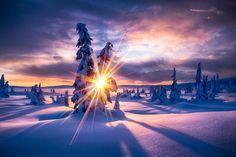 Winter Paradis - best on black