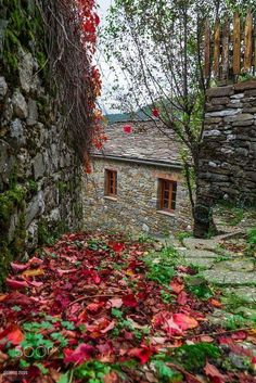 Autumn Papigo Greece